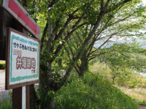 立梅用水、「竹やぶを抜けると昔の三代目井堰跡地です!」の案内版