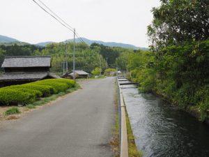 立梅用水(沈下橋付近〜波多瀬発電所)