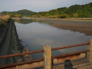 橘橋から望む五十鈴川派川
