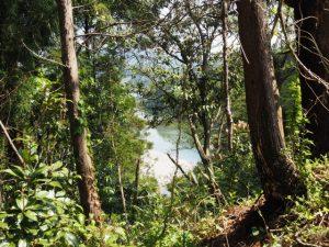 立梅用水(元丈の館〜勢和中学校)から望む櫛田川