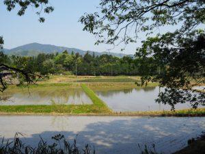 立梅用水(元丈の館〜勢和中学校)からの風景