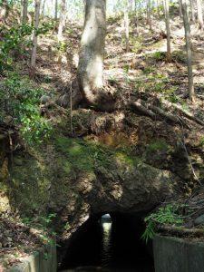 柳谷トンネル2入口(立梅用水)