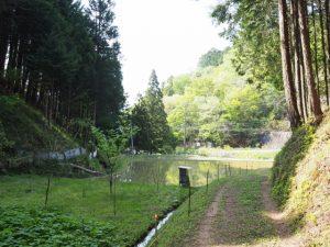 柳谷トンネル(立梅用水)から林道を戻って