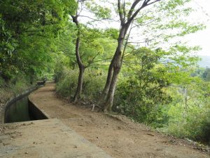 立梅用水、古江隧道出口方向
