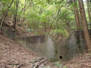 柳谷トンネル1入口(立梅用水)付近に設置されている治山ダム