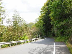 県道421号が狭路に(古江交差点から丹生方向へ)