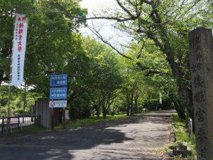 車両通行止めが解除される大祭の日(倭姫宮参道)