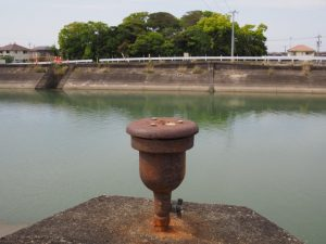 大湊川越しに望む志宝屋神社の社叢