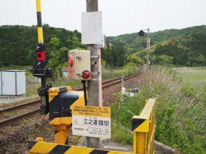JR参宮線 江之道踏切付近からの江神社(皇大神宮 摂社)社叢遠望