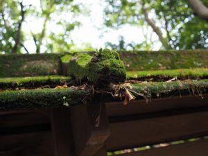 溶けるように朽ちている猿頭門(河原淵神社)