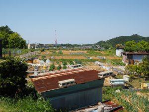 近鉄五十鈴川駅の高台