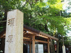 先週に追加修繕されていた手水舎(須原大社)