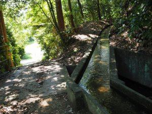 岩谷池からの水路(多気町丹生)