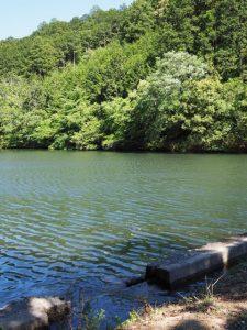 立梅用水が落ちる岩谷池(多気町丹生)