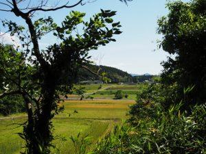 岩谷池に落ちる立梅用水からの風景(多気町丹生)