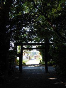 御塩殿神社(皇大神宮 所管社)の社窓から