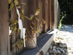 八尋殿(神麻続機殿神社)の御門に立てられた榊