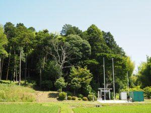 宇氣比神社の社叢遠望(松阪市山下町)
