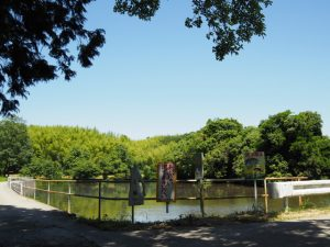 JR紀勢本線 徳和・多気間 牧内架道橋付近の池(松阪市山添町)
