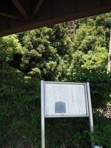 県道701号高架下(JR紀勢本線 徳和・多気間 中溝橋りょう付近)