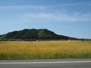 神山(神山城跡)の遠望