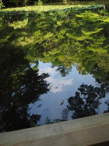 内宮 御池