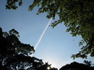 内宮神馬休養所付近にてオミアゲ写真