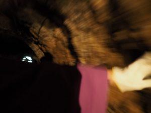 「立梅用水ボート下り」(丹生地区、塔ノ本トンネル)