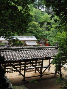 愛宕山への参道からの眺め(丹生山 神宮寺)