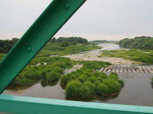 櫛田祓川統合頭首工から望む櫛田川の下流側