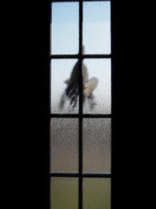 自宅の玄関扉に吊るしてある赤崎神社の御神杉