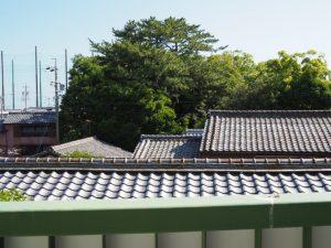 一色大橋への階段途中から望む御食神社(豊受大神宮 摂社)の社叢