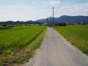 鶴松新田耕地整理碑〜国道42号(伊勢市一色町)