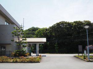 伊勢市役所 二見総合支所付近から望む堅田神社の社叢