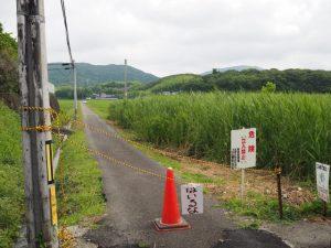 「危険立入禁止」な伊雜宮御料田へと通じる田んぼ道