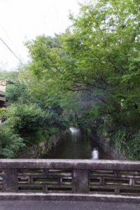 お茶屋本家三友付近(高瀬川)