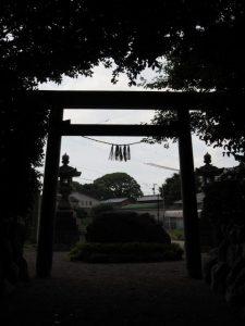 高向大社から鳥居の先に望む宇須乃野神社の社叢