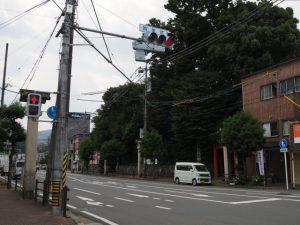 箕曲中松原神社(伊勢市岩渕)の社叢遠望