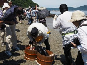しろんご祭(菅島)