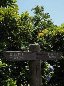 <←250m 白髭神社 菅島灯台 500m→>道標