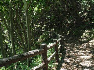 白髭神社〜菅島灯台