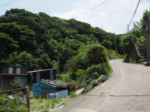 大山へと続く道(菅島)