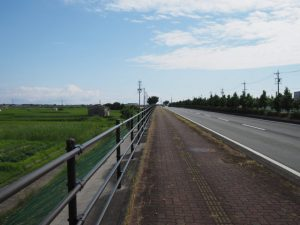 中堤の木標付近から国道42号