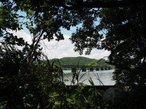 二見神社(姫宮稲荷神社)付近から望むJR参宮線汐合川橋梁