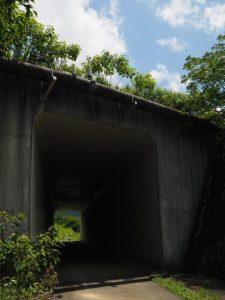 鏡宮神社付近から朝熊川の左岸を・・・