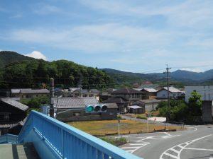 中村歩道橋から望む興玉の森(宇治山田神社)