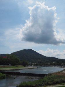 五十鈴川の河川敷(側川原)