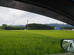 サニーロード勝田西交差点付近からの鴨下神社方向の遠望