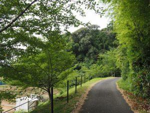 ゲートボール場付近から鴨下神社(皇大神宮末社)へ