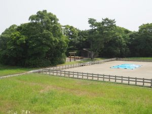 鹹水を納める樽の数が増えていた御塩浜(伊勢市二見町西)